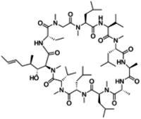 Cyclosporin D solution