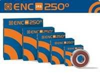 ENC 250 2RS High Temperature Bearings