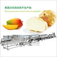 Fruit and Vegetable Drying Production Line
