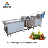 Fruit Vegetable Bubble Washing Machine