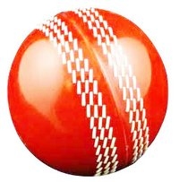 PVC Cricket Training Ball