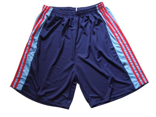 Basketball Shorts Nirmal Jali