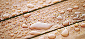 Oil and Water Repellent Paints