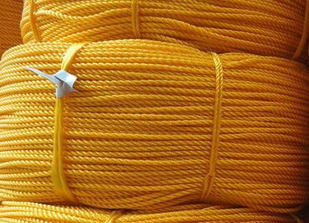 Virgin PP Danline Ropes