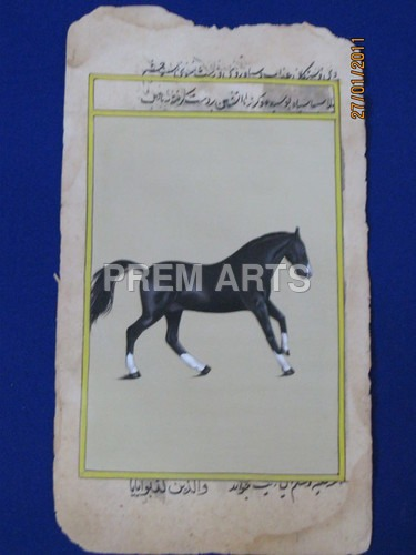 Horse Painting on Paper