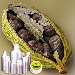 Cardamom Extra Absolute Oil