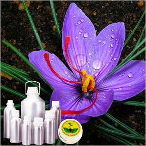 Saffron/ Zafran/Kesar Absolute Oil