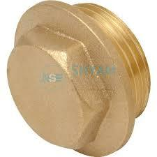 Brass Hex Collar Plug