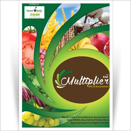 Multiplier