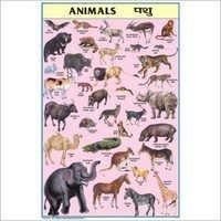 Animals Chart