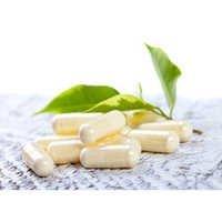 Multi-Strain Probiotic
