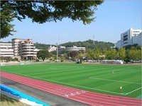 Playground Soccer Field