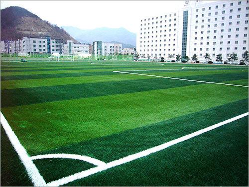 LG Display Soccer Field