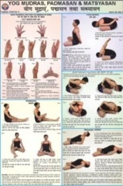 Yog, Mudrasan, Padmasan & Matsyasan Chart