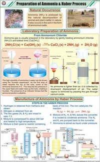 Prep of Ammonia & Haber Process Chart