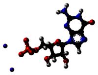 Disodium Guanylate