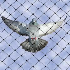 Anti Bird Repellent Net