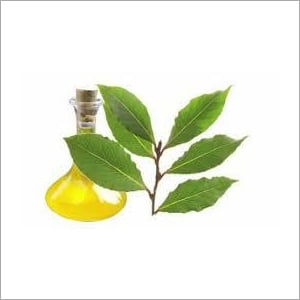 Bay Leaf Oil Age Group: All Age Group