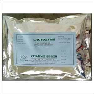 Lactozyme Cattle Feed Supplement