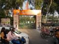 Flex Arch Gate