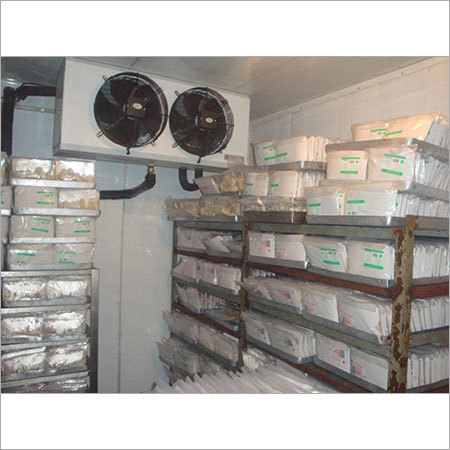Commercial Freezer Room