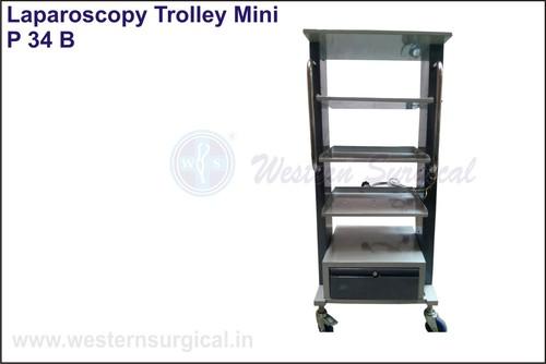 Economy Laparoscopy/Monitor Trolley