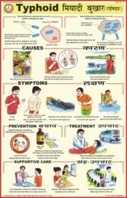 Prevent Diseases Chart