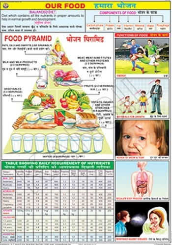 Our Food Chart