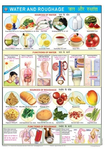 Water & Roughage Chart