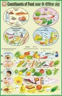Constituents of Food Chart