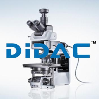 Semi Motorized Fluorescence Microscope BX53i