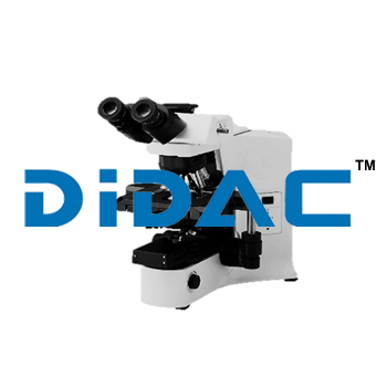Manual System Microscope BX43
