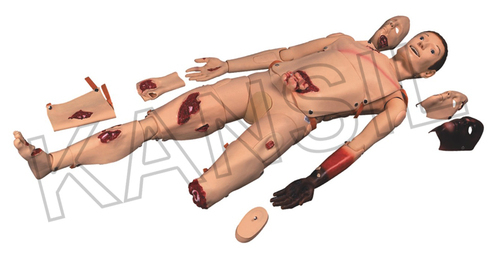 Advanced Trauma Simulator Model