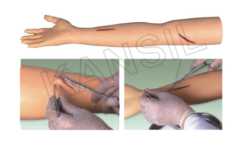 Advanced Surgical Suture Arm Model