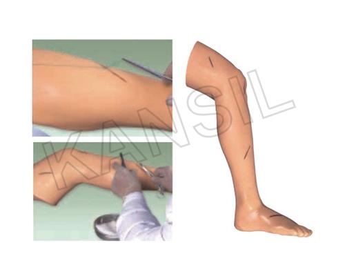 Advanced Surgical Suture Leg Model