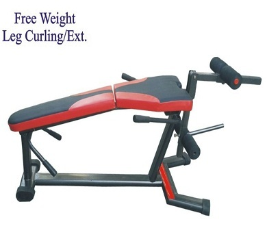 FREE WEIGHT LEG CURLING