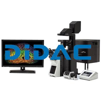 Confocal Laser Scanning Microscope FV3000