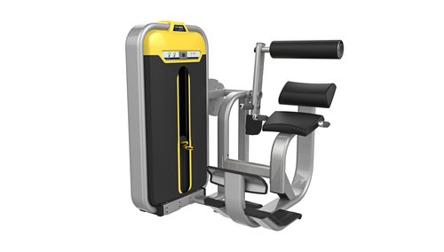 Back Extension Fitness Equipment