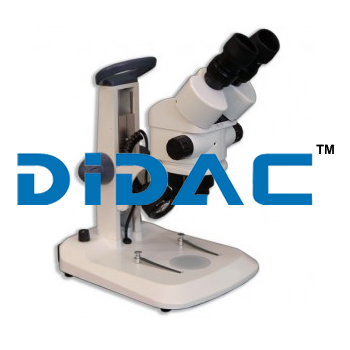 Binocular Entry Level Stereo Microscope EM32