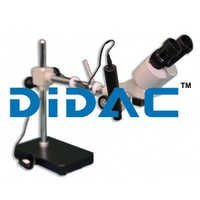 Stereo Microscopes BMK1