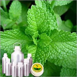 Bergamot Mint Oil