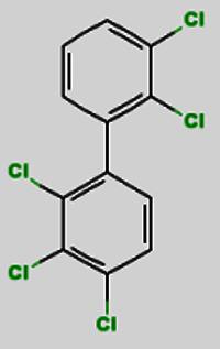 Aroclor 1262
