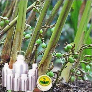 Guatemalan Cardamom Oil