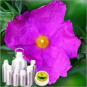 Cistus Oil