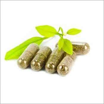 Herbal and Ayurvedic Medicine