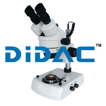Stereo Microscope KSW5000