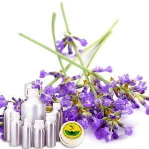 High Altitude Lavender Oil