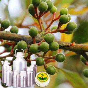 Litsea Cubeba (May Chang) Oil