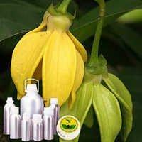 Ylang Ylang Oil Madgascar