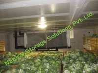 Cabbage Cold Storage